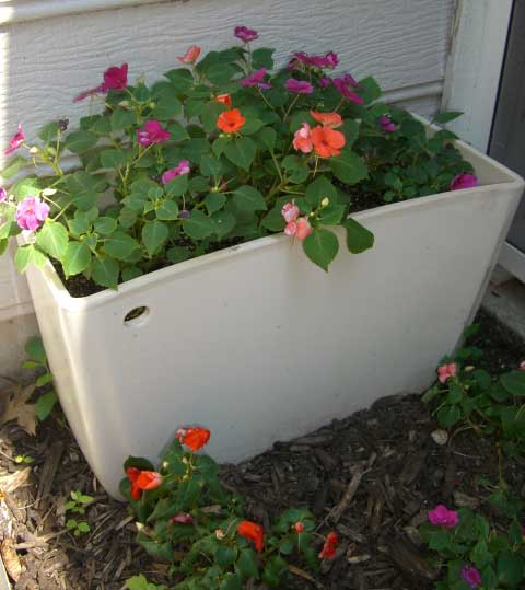 gayle leonard's flower planter made from a recycled toilet tank