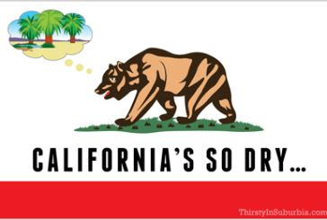 "Drought Jokes: ""It's So Dry…"" California Edition!"
